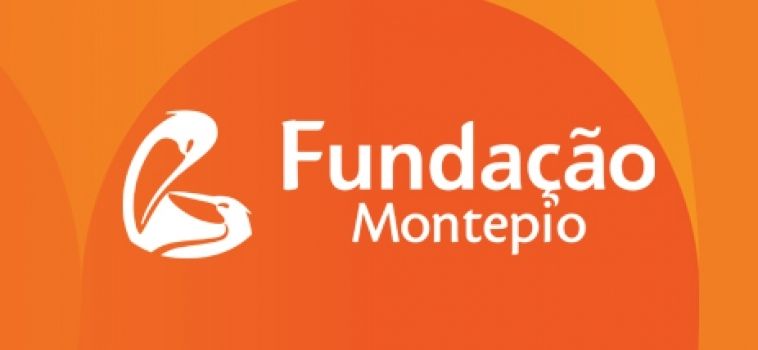 Financiamento através do Programa FACES